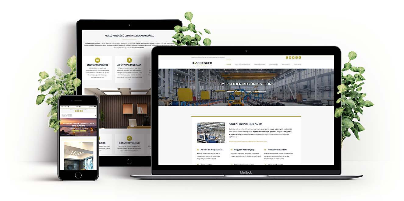 Hasenegger WordPress Weboldal